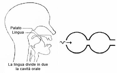 Tecnica a due cavità.